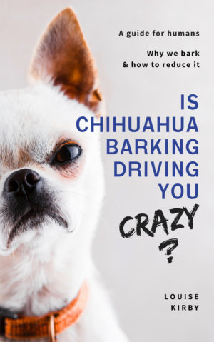 Is Chihuahua Barking Driving You Crazy?